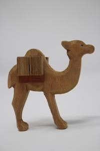 Kamel 22